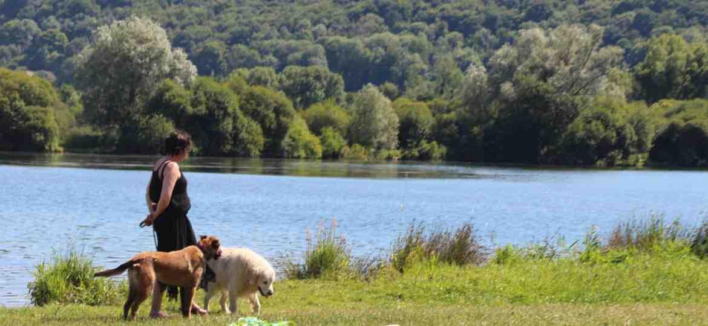Où passer un week-end romantique en Normandie?